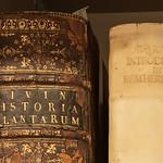 Souls of Ancient Books -9115-2
