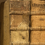 Souls of Ancient Books -9105